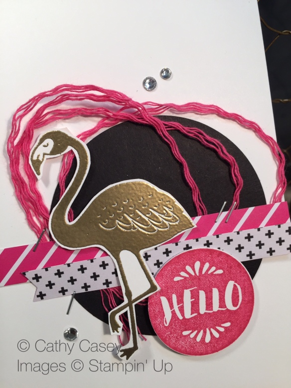 Pop of Paradise Stampin' Up