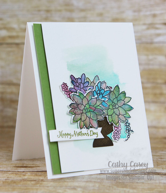 Oh So Succulent Stampin' Up