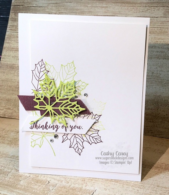 Colorful Seasons Stampin' Up