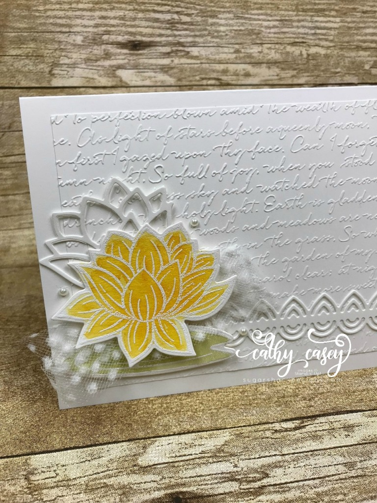 Lovely Lily Pad Stampin' Up